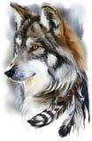 Peinture d'aquarelle de loup Images libres de droits