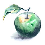 Peinture d'aquarelle de pomme verte Photographie stock libre de droits