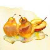 Peinture d'aquarelle sur le fond blanc Image libre de droits