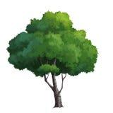 peinture d'arbre Photo stock