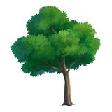 Peinture d'arbre pour le fond Photo libre de droits