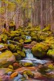 Peinture d'une petite rivière avec de grands rochers et arbres Photographie stock libre de droits