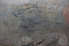 Peinture de caverne photo stock