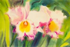 Peinture de la couleur pourpre et rose de la fleur d'orchidée et des feuilles de vert Image stock