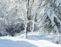 Peinture de paysage d'hiver photographie stock libre de droits