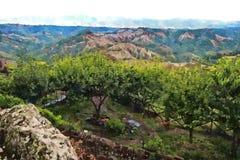 Peinture de paysage de la Toscane illustration libre de droits