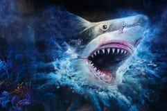 Peinture de requin Illustration de Vecteur