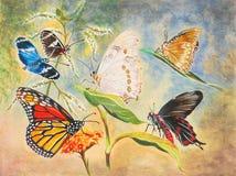 Peinture de six beaux guindineaux Images stock