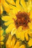 Peinture de Sunny Sunflowers Oil sur la toile Photo stock
