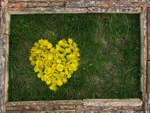 Peinture des fleurs jaunes Image stock
