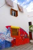 Peinture murale et feuilles, Asilah, Maroc Photo libre de droits