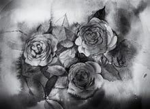 Peinture noire et blanche d'aquarelle de roses Images libres de droits