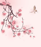 Peinture orientale de type, fleur de cerise au printemps Photos stock