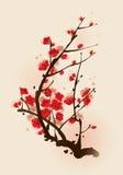 Peinture orientale de type, fleur de plomb au printemps Illustration Stock