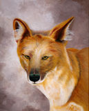 Peinture originale d'un chien sauvage asiatique, un art d'enfant Photographie stock libre de droits
