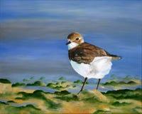 Peinture originale d'un peu de pluvier de sable, un art d'enfant Photographie stock