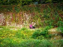 Peinture sans titre de femme dans la saison d'automne à Séoul, Corée Photos stock