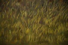 peintures à l'huile Photos libres de droits