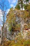Peintures de roche des gens antiques Le cerf commun de parc naturel coule la région de Sverdlovsk Les Monts Oural moyens Photos libres de droits