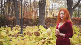 Peinzende jonge meisjesgangen door het de herfstpark stock video