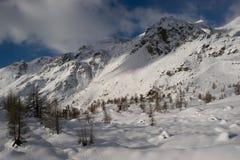 Peio Fonti - Val di Sole, Trentino fotos de archivo