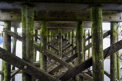 Peir. Looking under a pier in St George NB Stock Photos