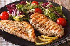 Peito de frango grelhado com salada da chicória, tomates, couve Imagens de Stock Royalty Free