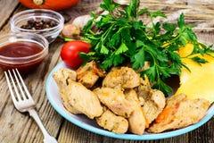 Peito de peru Roasted com ervas, sopa da abóbora e salsa no Th Imagens de Stock Royalty Free