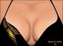 Peito fêmea bonito em gotas de água Fotos de Stock