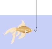 Peixe dourado Imagem de Stock