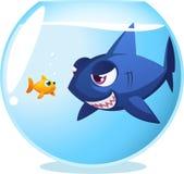 Peixe dourado com tubarão perigoso Imagem de Stock Royalty Free