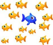 Peixe dourado diferente Imagens de Stock