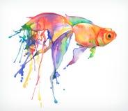 Peixe dourado, ilustração do vetor Imagens de Stock Royalty Free