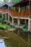 Peixe dourado na ponte pedestre Fotografia de Stock Royalty Free