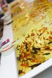 Peixe dourado que escava no festival japonês. Foto de Stock Royalty Free