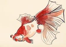 Peixe dourado vermelho no papel colorido do marfim ilustração stock
