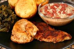 Peixe-gato e galinha de Cajun imagem de stock