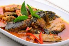 Peixe-gato fritado picante do Stir Foto de Stock Royalty Free