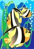 peixes Fotografia de Stock Royalty Free