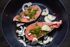 Peixes Foto de Stock
