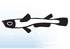 Peixes abstratos ilustração royalty free