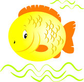 Peixes amarelos Fotos de Stock Royalty Free