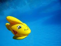 Peixes amarelos surpreendentes do brinquedo no papel de parede macro da ?gua azul profunda da piscina imagem de stock royalty free