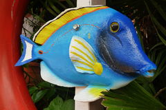 Peixes azuis Fotos de Stock Royalty Free