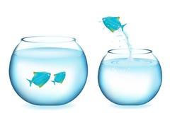 Peixes azuis de salto Fotos de Stock Royalty Free