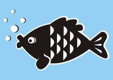 Peixes, carpa Foto de Stock Royalty Free