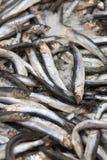 Peixes CONGELADOS Mercado dos Freshfish brema da Porca-cabeça Venda dos peixes no mercado Peixes do sargo no gelo Peixes frescos  Fotografia de Stock