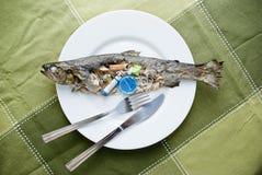 Peixes contaminados imagens de stock royalty free