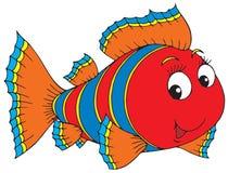 Peixes corais Imagem de Stock