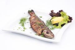 Peixes cozidos Imagem de Stock
